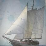 CIMG5608