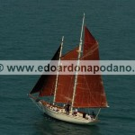 1963 gaff schooner  replica Murray Peterson Coaster 37 13 mt/10mt