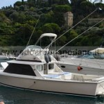 SOLD 1977 Bertram 31 - natante, no plates VENDUTO